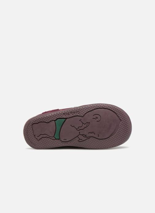 Boots en enkellaarsjes Kickers Boustar Bordeaux boven