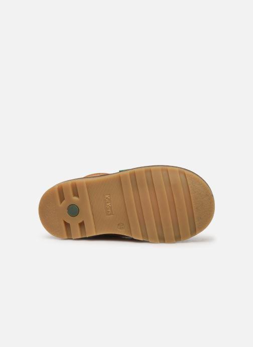 Boots en enkellaarsjes Kickers Nonoklick Geel boven