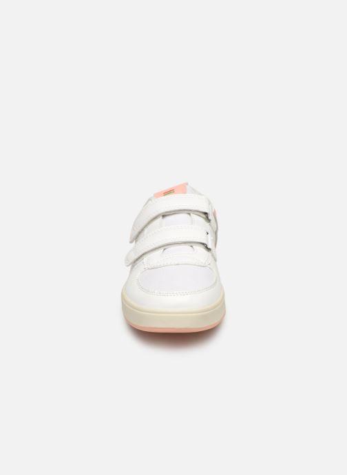 Sneakers Kickers Gready Low Cdt Wit model