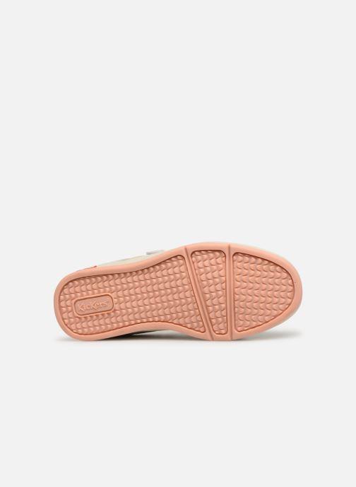Sneakers Kickers Gready Low Cdt Wit boven