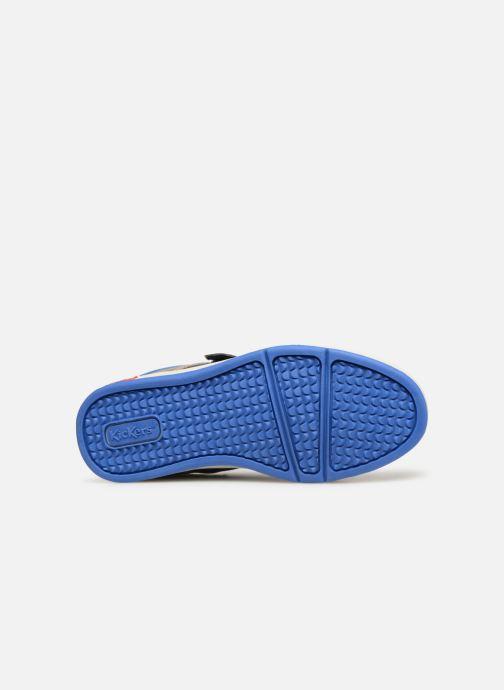 Baskets Kickers Gready Low Cdt Bleu vue haut