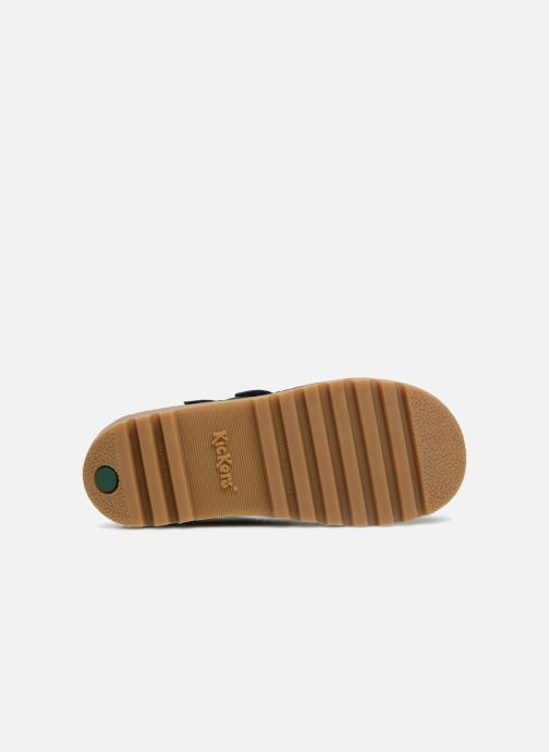 Stiefeletten & Boots Kickers Neovelcro blau ansicht von oben