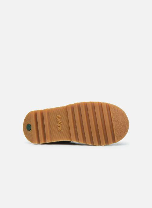 Bottines et boots Kickers Neorallyz Vert vue haut