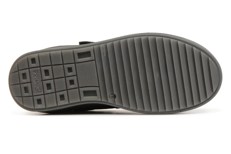Sneaker Primigi Felice GTX schwarz ansicht von oben