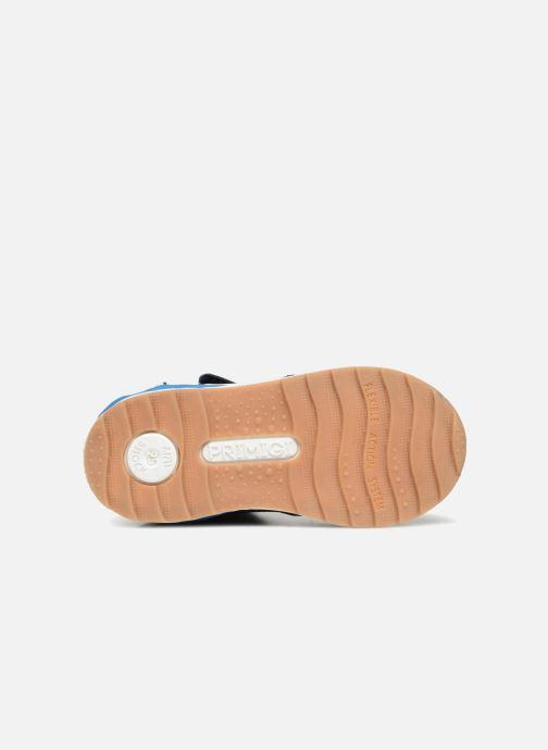 Sneakers Primigi Emiliano Azzurro immagine dall'alto
