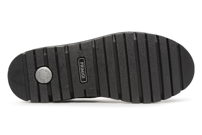 Stiefeletten & Boots Primigi Delfina GTX schwarz ansicht von oben