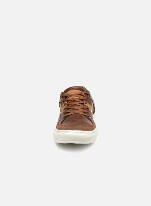 Trainers British Knights Cove Brown model view