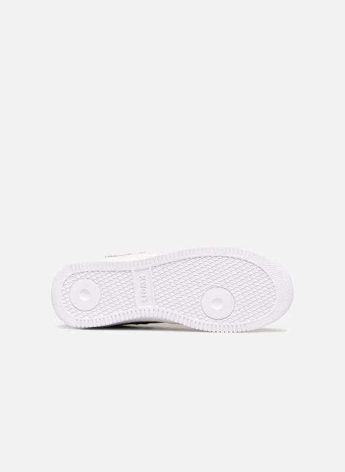 Sneakers Kwots MASTER Nero immagine dall'alto