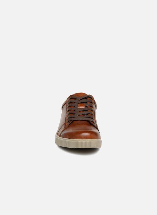 Baskets Skechers Volden Fandom Marron vue portées chaussures