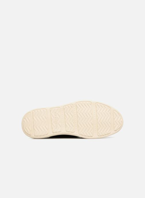 Schnürschuhe Skechers Status Lerado schwarz ansicht von oben