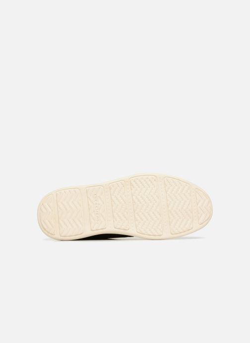 Stiefeletten & Boots Skechers Status Rolano braun ansicht von oben