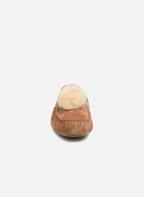 Pantofole UGG Dakota Pom Pom Marrone modello indossato
