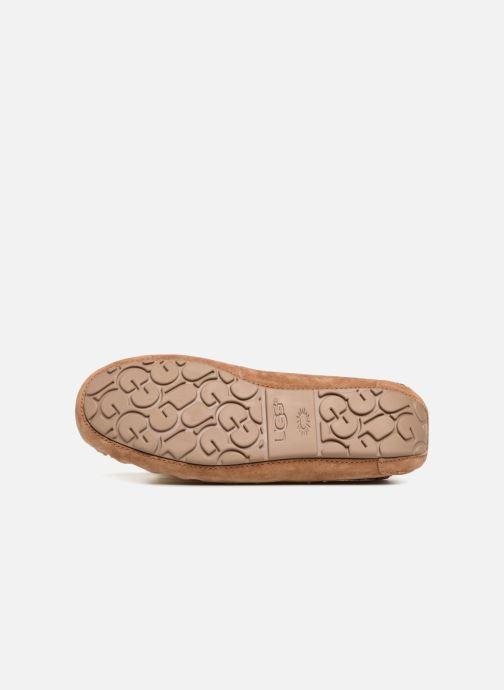 Pantofole UGG Dakota Pom Pom Marrone immagine dall'alto