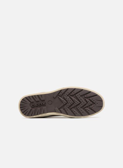 Sneakers Geox U MATTIAS B ABX B U44T1B Marrone immagine dall'alto