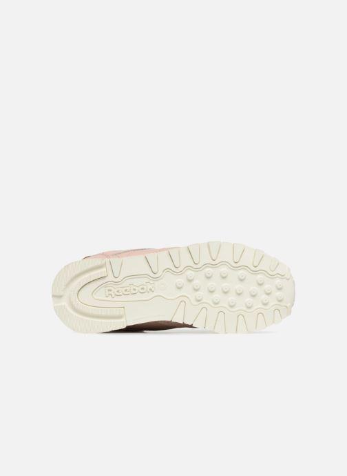 Sneaker Reebok Classic Leather C beige ansicht von oben