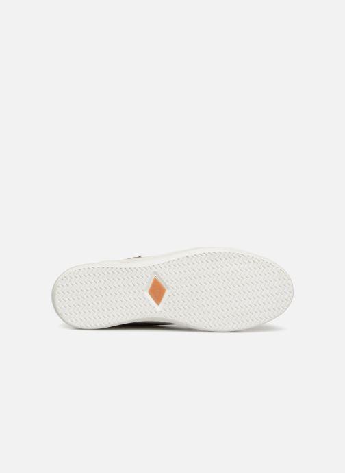 Sneakers P-L-D-M By Palladium Nerola F Cash Wit boven