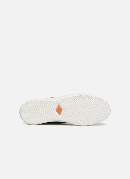 Sneakers P-L-D-M By Palladium Nerola F Cash Wit boven