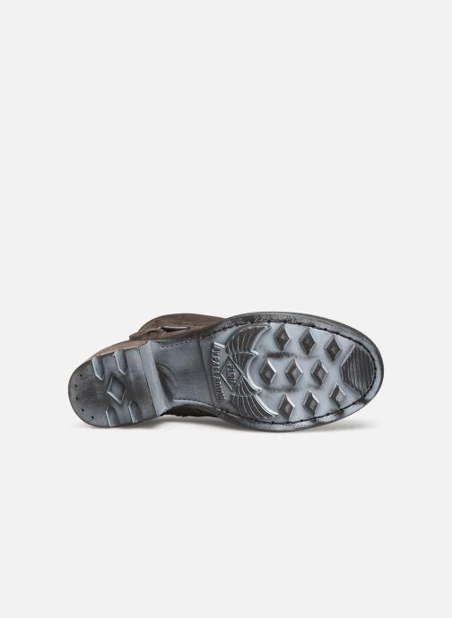 Stiefeletten & Boots P-L-D-M By Palladium Clue Cmr braun ansicht von oben