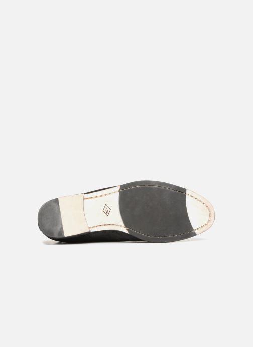 Zapatos con cordones P-L-D-M By Palladium Portobello Sph Negro vista de arriba