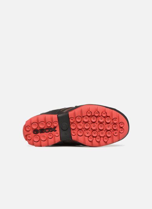 Sneaker Geox J New Savage Boy J841VC braun ansicht von oben