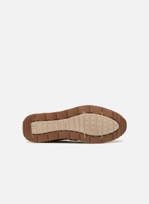 Sneakers UGG M Trigo Spill Seam Beige boven