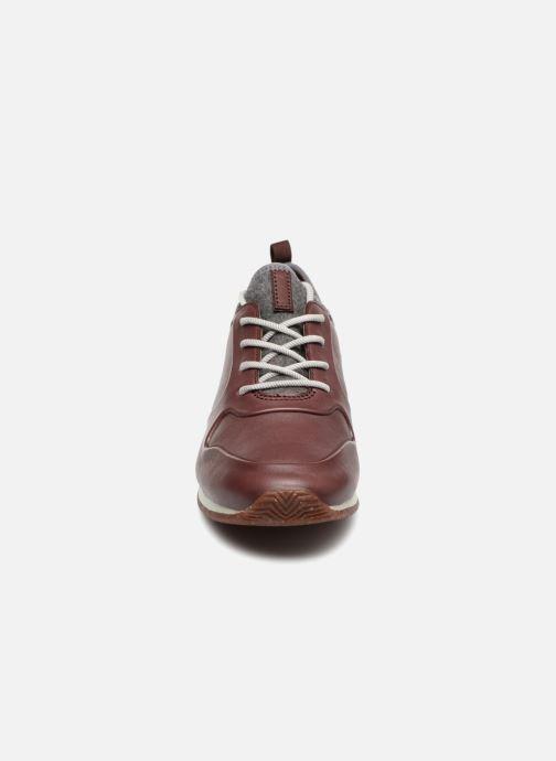 Baskets Clarks Hero Fuse. Marron vue portées chaussures
