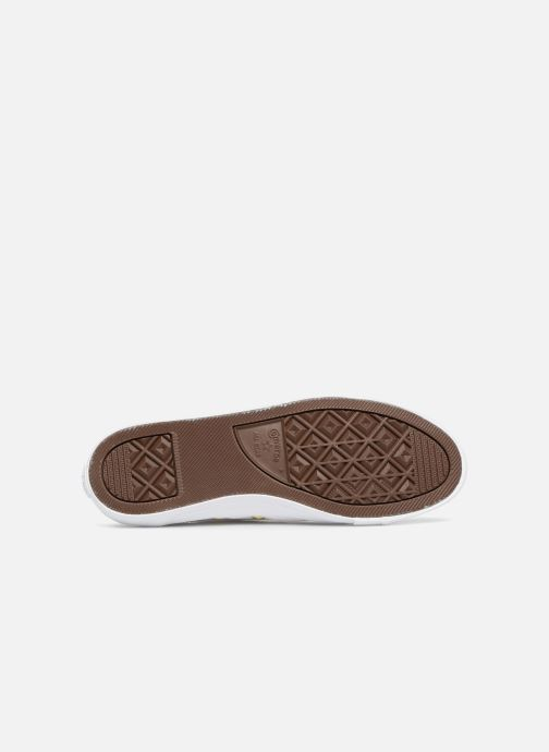 Converse Converse Converse Chuck Taylor Dainty Ox (Bianco) - scarpe da ginnastica chez   Vendita  06bb8d