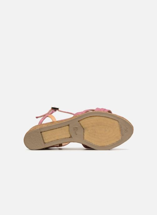 Espadrilles Castaner BETSY Pink view from above