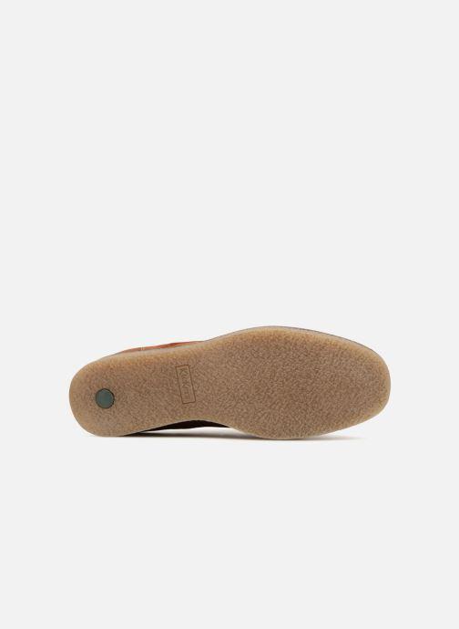 Chaussures à lacets Kickers ZELAND Marron vue haut