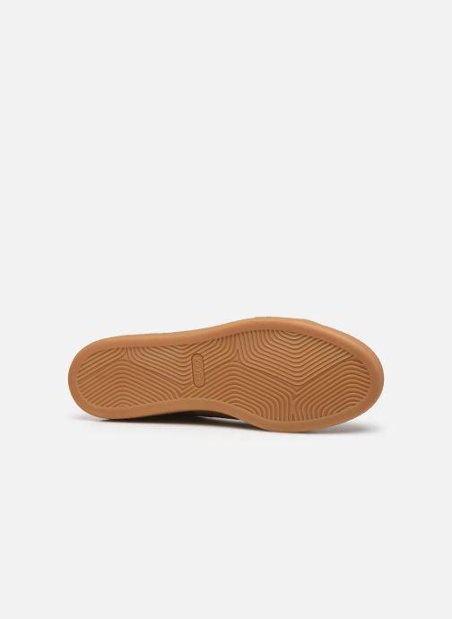 Sneakers Kickers SAN MARCO Marrone immagine dall'alto
