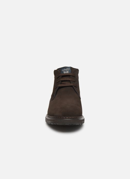 Lace-up shoes Callaghan Free Crep Brown model view