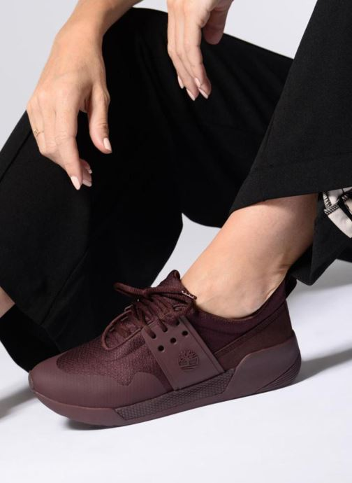 Trainers Timberland Kiri Up Knit Oxford Burgundy view from underneath / model view