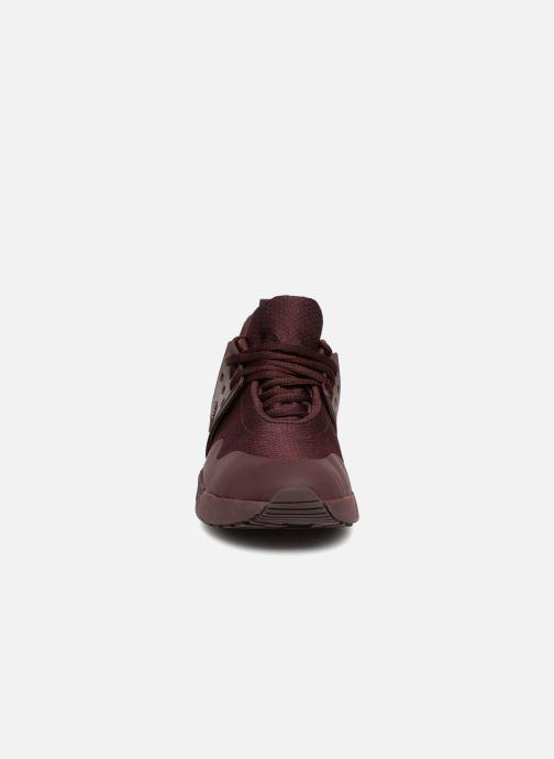 Baskets Timberland Kiri Up Knit Oxford Bordeaux vue portées chaussures