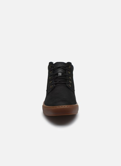 Trainers Timberland Dauset Chukka Black model view