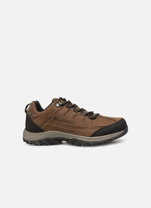 Sport shoes Columbia Terrebonne II Outdry Brown back view