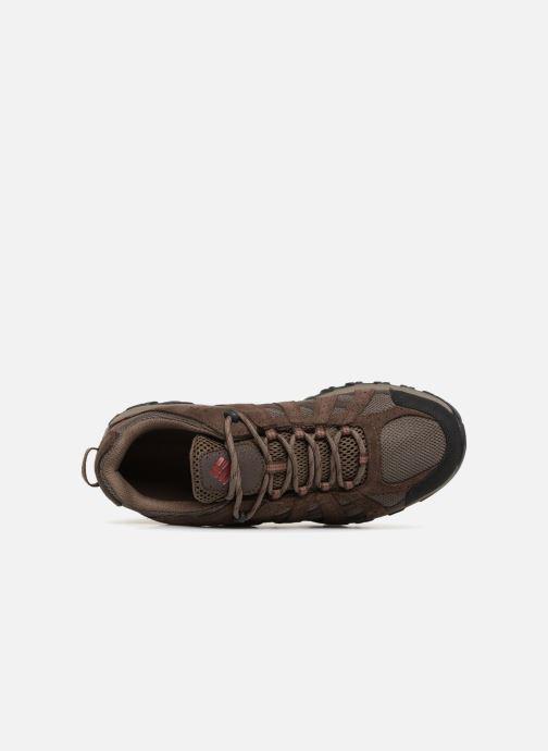 Chaussures de sport Columbia Canyon Point Waterproof Marron vue gauche