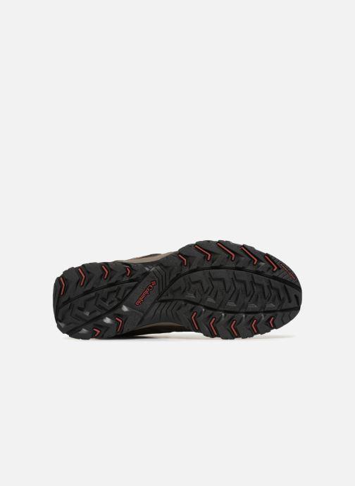 Canyon marron De Chaussures Sport Point Columbia Chez 342252 Waterproof dtSdq
