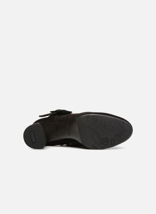 Bottines et boots Perlato 10805 Noir vue haut