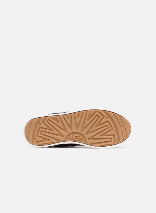 Baskets UGG Boscoe Sneaker K Noir vue haut