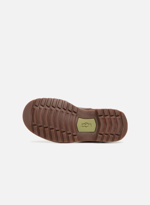 Stiefeletten & Boots UGG Callum K braun ansicht von oben