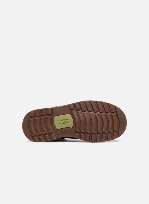 Stiefeletten & Boots UGG Callum K schwarz ansicht von oben