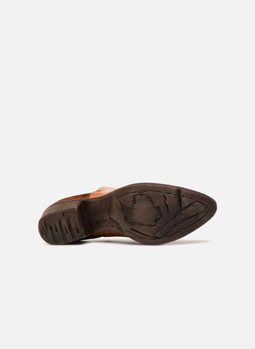 Ankle boots Khrio Polacco 2405 Brown view from above