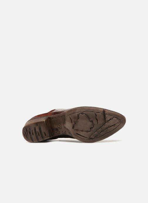 Boots en enkellaarsjes Khrio Polacco 2405 Bruin boven