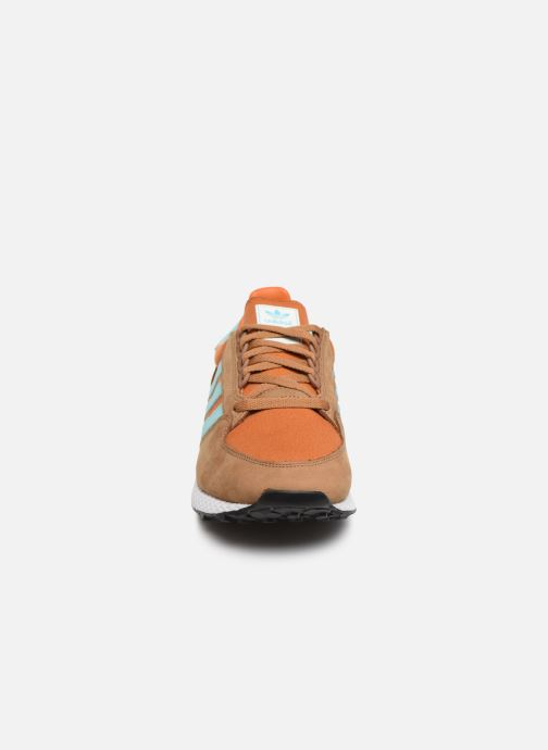 Trainers adidas originals Forest Grove Brown model view