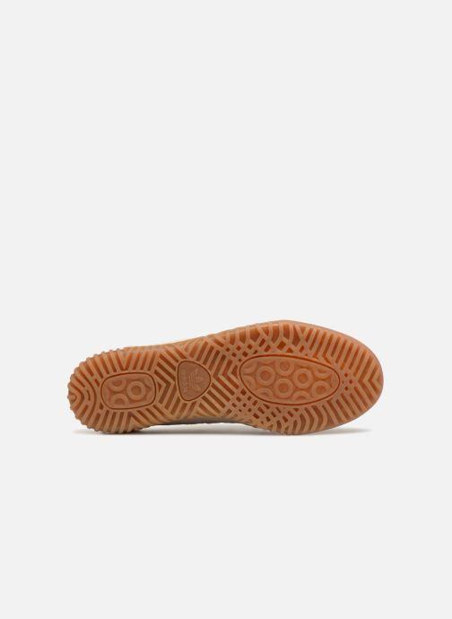 Sneakers adidas originals Indoor Super Beige immagine dall'alto