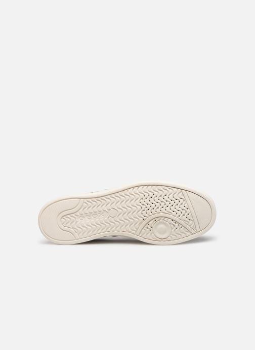 Sneakers Geox U WARRENS B Grå bild från ovan