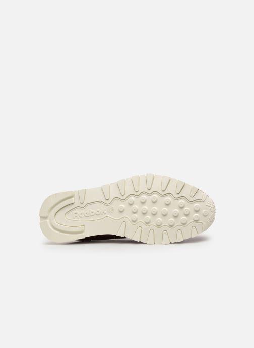 Sneakers Reebok Classic Leather MU Bordeaux boven