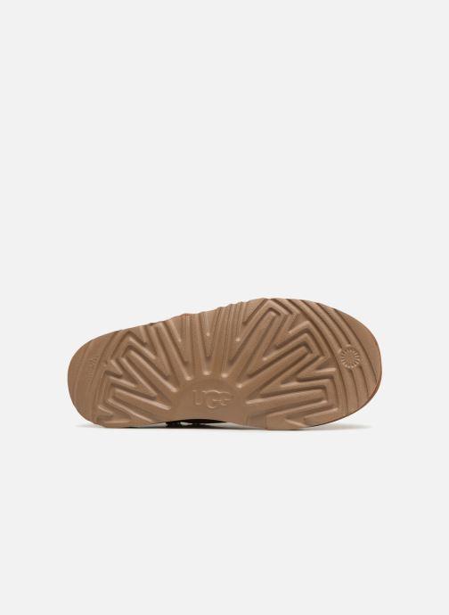 Stövlar & gummistövlar UGG Mini Bailey Button Poppy Brun bild från ovan