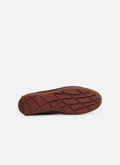 Loafers TBS Portter Burgundy view from above