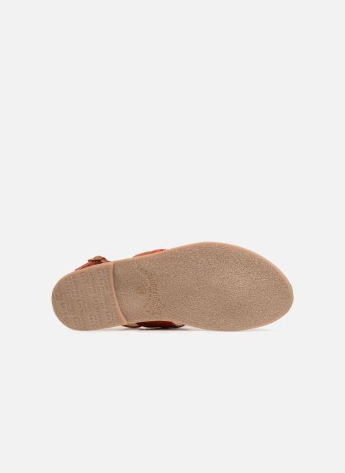 Sandales et nu-pieds Les Tropéziennes par M Belarbi Melita Rouge vue haut